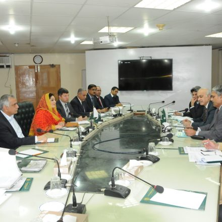 GB and AJK will get 3G/ 4G facility within this calendar year. Anusha Rehman