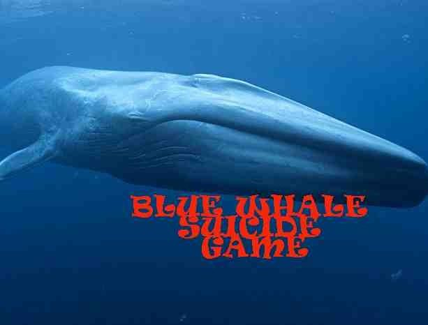 Blue whale game is disrupting the teenagers in different ways
