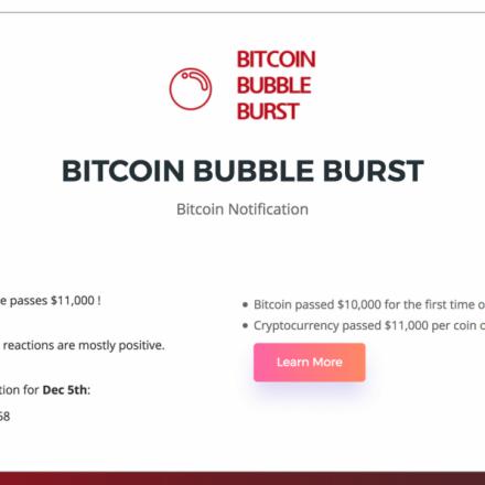 Bitcoin Bubble Burster predicts the Bitcoin value and crash